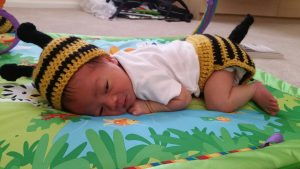 Infant Bee Hat and Diaper Cover